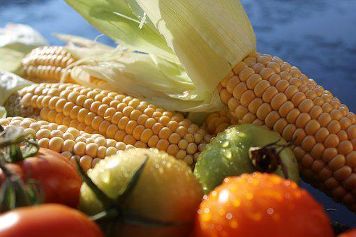 Corn, Corn On The Cob, Tomatoes, Vegetables, Fruit
