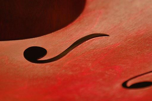 Instruments, Bass, Cello, Curves, Music, Violin