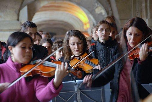 Chamber Music, Violin, Viola, Instrument, Performing