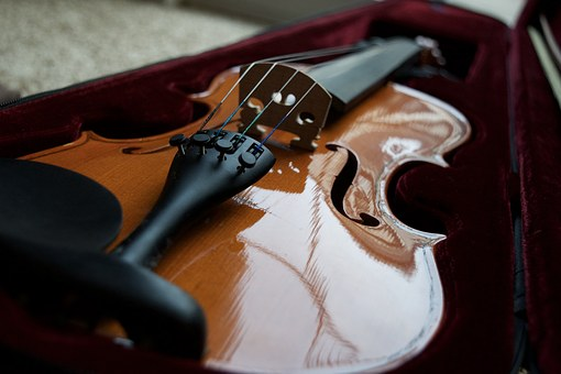 Violin Bridge, Violin, Instrument, String, Wood, Brown