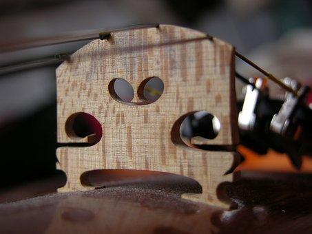 Macro, Close Up, Violin, Orchestra, Web, Dust, Music