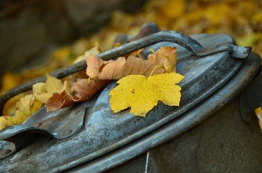 Autumn, Leaves, Garbage Can, Leaf Fall, Fall Foliage