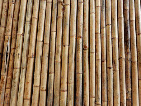 Bamboo, Structure, Texture, Bamboo Rods, Bamboo Cane