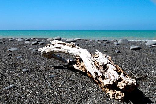 Sea, Stick, Rock, Beach, Water, Ocean, Nature, Horizon