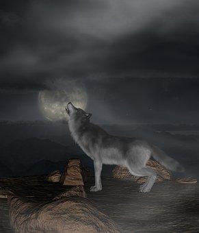 Wolf, Moon, Howl, Night, Atmosphere, Creepy, Mystical