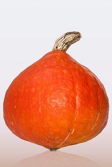 Kabocha, Japanese, Giant Pumpkin, Cucurbita Maxima