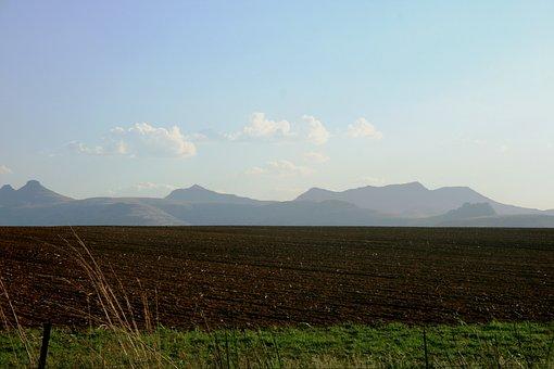 Tilled Land, Brown Soil, Soil, Green, Grass