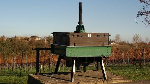 Wine, Celtic Presse, Vines, Weinstrasse, Palatinate