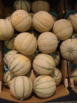 Melon, Fruit, Food, Power, Cavaillon, Lectoure, Bulk