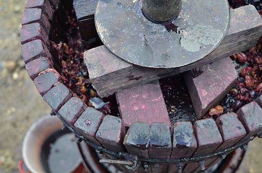 Grape, Wine, Press, Work, Wine Making, Red Wine