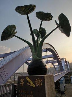 Taro, Jiaxian Dist, Kaohsiung City, Taiwan, Bridge