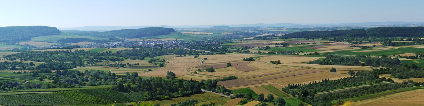 Panorama, Fields, Vineyards, Agriculture, Horizon, Wide