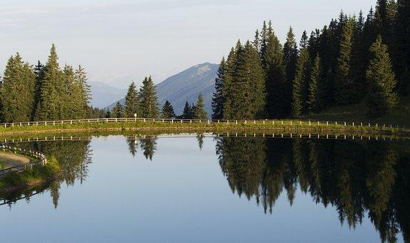Hochkar, Lake, Pine, Water, Landscape, Nature, Austria