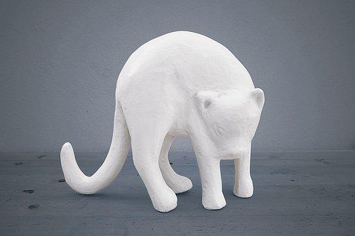 Cat Plaster, White Cat, Plaster, Blue Background