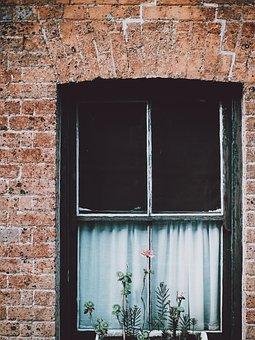 Window, Glass, Curtain, Flower, Plants, Bricks, Tile