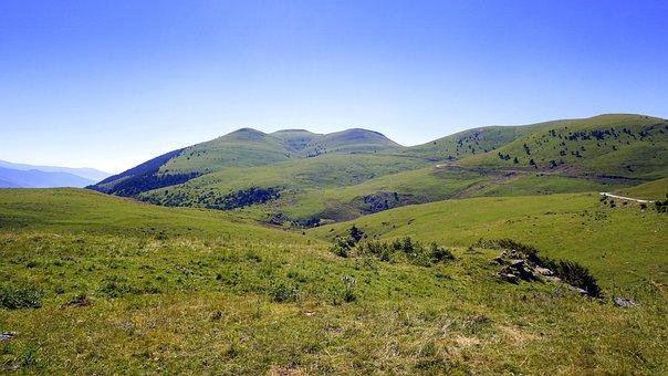 Meadows, Green, Landscape, Prairie, Field, Pastures