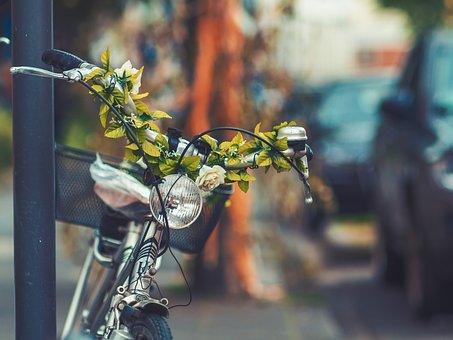 Bike, Bicycle, Basket, Street, Blur, Green