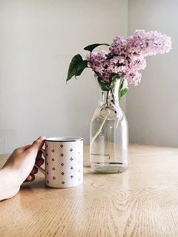 Display, Pink, Flower, Vase, Water, Jar, Mug, Cup