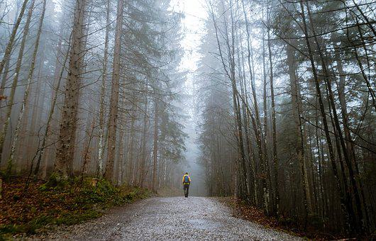 People, Man, Alone, Walking, Travel, Adventure