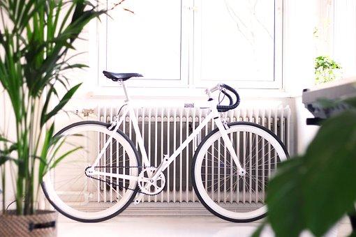 Architecture, Indoor, Interior, Green, Plant, Bike