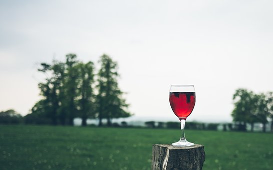Red, Wine, Glass, Beverage, Drinks, Green, Grass