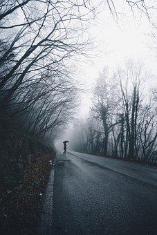 People, Woman, Umbrella, Rain, Alone, Road, Travel