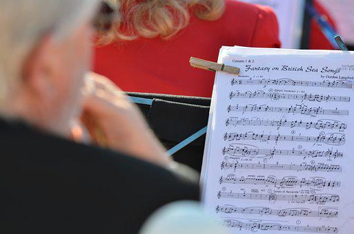 Music, Musician, Musical, Instrument, Performance