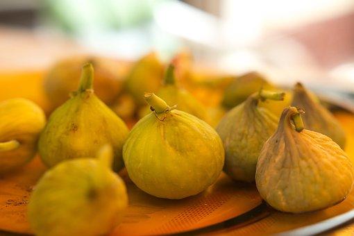 Fig, Figs, Fig Tree, Fruit, Fresh, Food, Organic, Sweet