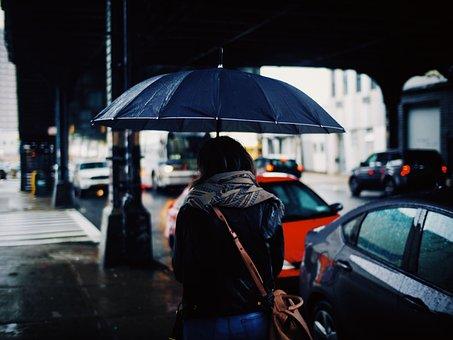 People, Woman, Rain, Umbrella, Car, Vehicle