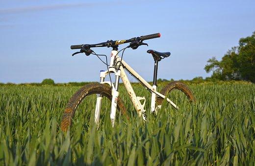 Bike, Bicycle, Sport, Hobby, Green, Grass, Field, Sky