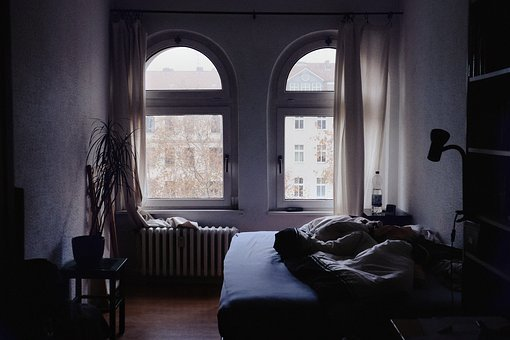 Bed, Sheet, Blanket, Room, Interior, Plant, Window