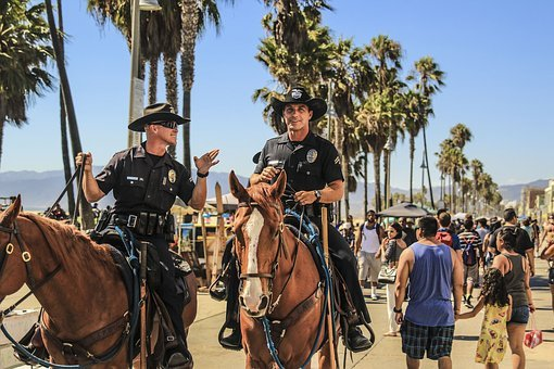 People, Man, Police, Horse, Travel, Adventure, Animal