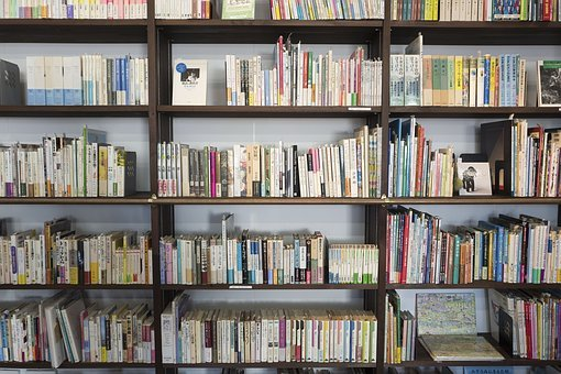 Book, Novel, Read, Library, Shelf, Author, Pages