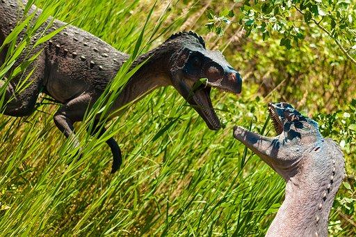 Dinosaurs, Gad, Mammal, Dino, Extinct, Model, Dragon