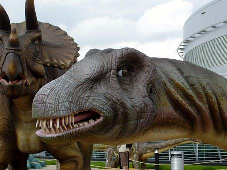 Dinosaur, Brontosaurus, Head, Teeth, Extinct, Maquette