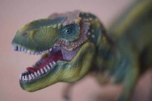 Dino, Dinosaur, Tyrannosaurus Rex, Replica, Toys
