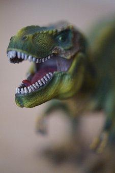 Foot, Tooth, Dangerous, Tyrannosaurus Rex, Predator