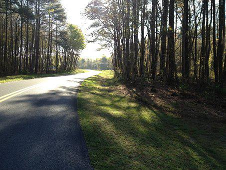 Maryland, Princess Anne, Back Road, Trees, Path, Road