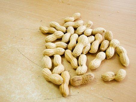 Peanuts, Macro, Eat, Food, Close