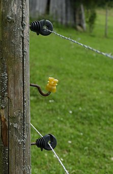 Pasture Fence, Insulating Pole, Wire, Cow Pasture