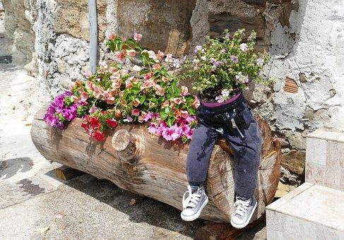 Deco, Flowers, Decoration, Plant, Florist