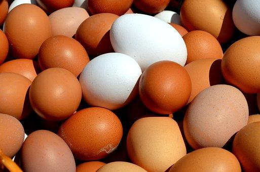 Egg, Hen's Egg, Close Up, Basket Cosy, Brown Egg