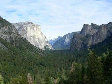 Nature, Reserve, Yosemite, U, S, A, Park