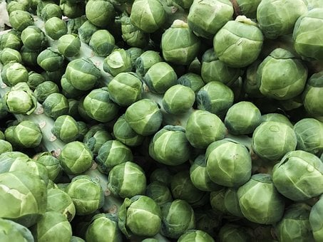 Sprouts, Vegetable, Food, Healthy, Green, Fresh