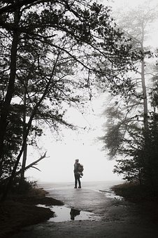 Tree, Plant, Nature, Travel, Outdoor, People, Man