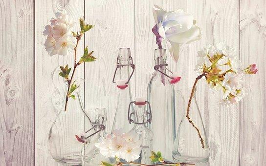 Bottles, Vases, Flower Vases, Glasses, Blossom, Bloom