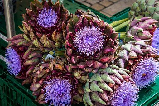 Artichoke, Vegetables, Artichoke Flower, Blossom, Bloom