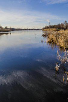 River, For, Shore, Water, Reed, Sky, Clouds