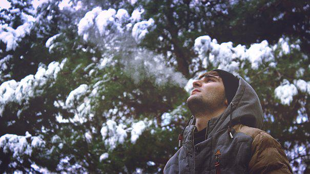 Man, Guy, Snow, Hoodie, Cold, Winter, Trees, Nature
