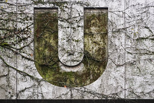 Wall, Plants, Roots, Letter, Vine, Old, Gray Letter